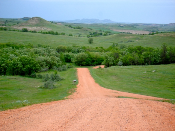 Red road coming cutting through the ranch.