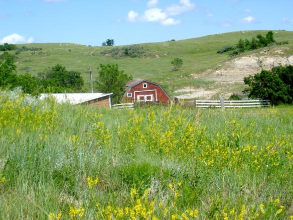 Summer Barn