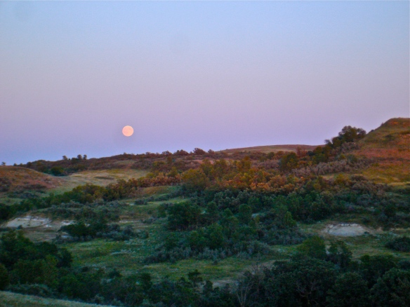 moon above the landscape
