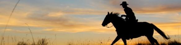 cropped-cowboy.jpg