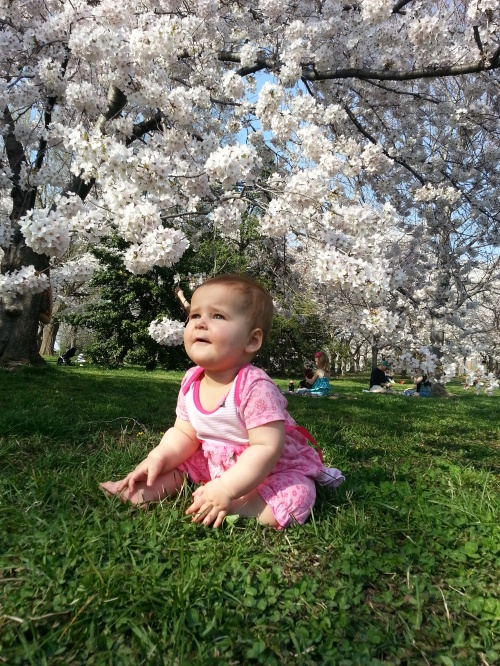 Baby with Cherry Blossoms