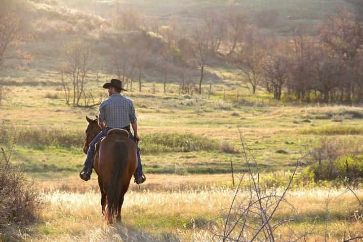cowboy-in-spring.jpg