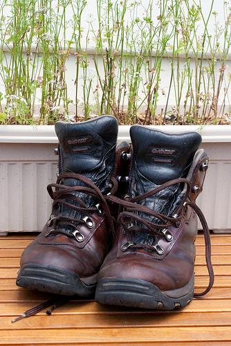 Toni's Boots