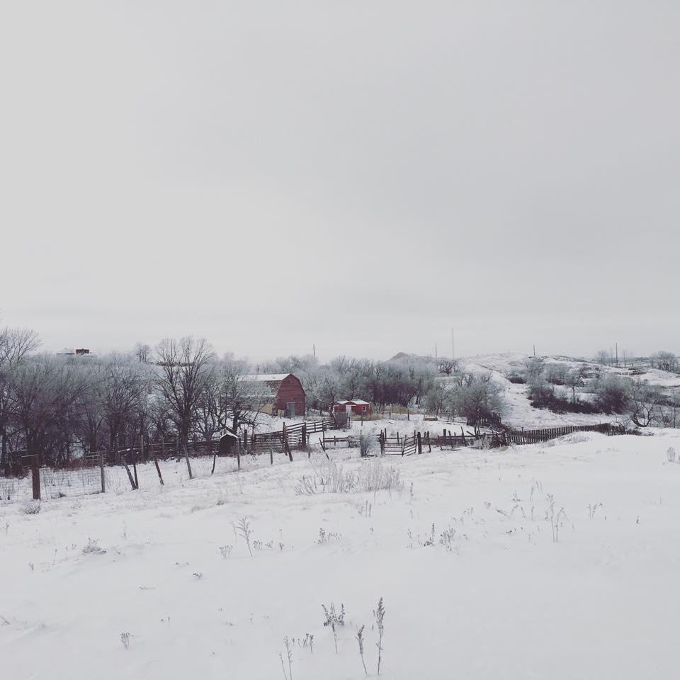winter barnyard