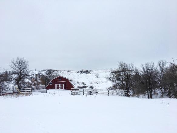 snow-2-1