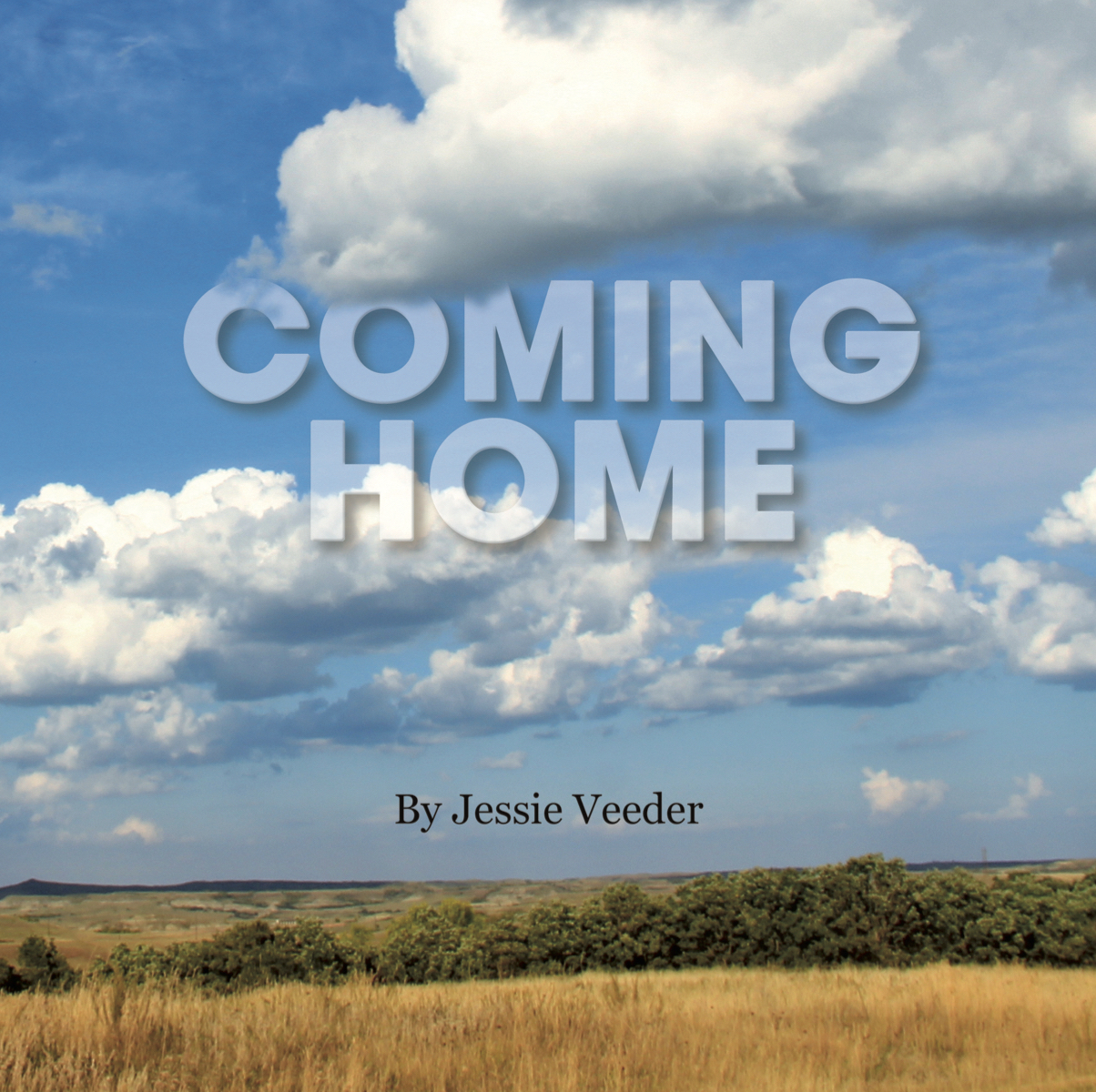 Jessie Veeder Book Cover copy