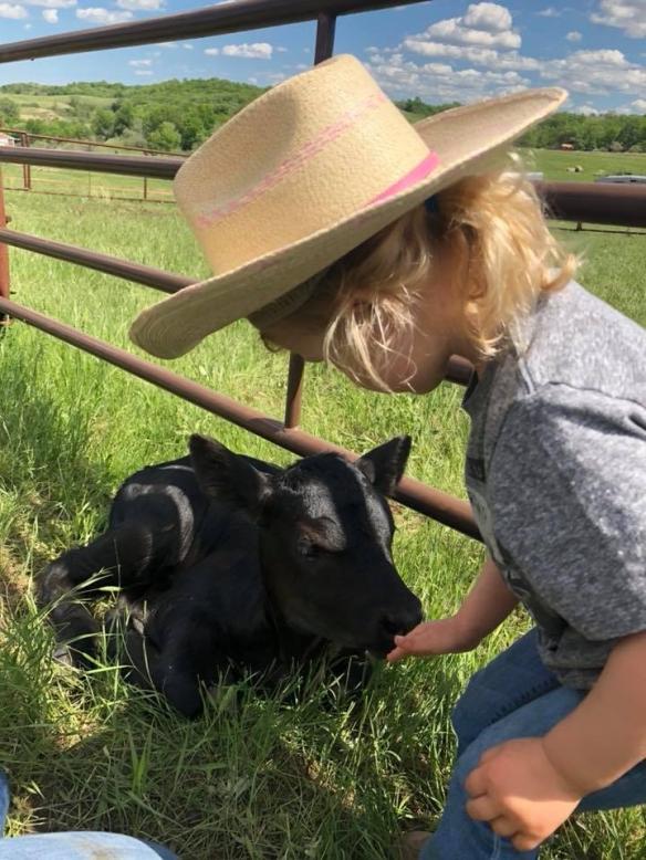 Edie and calf